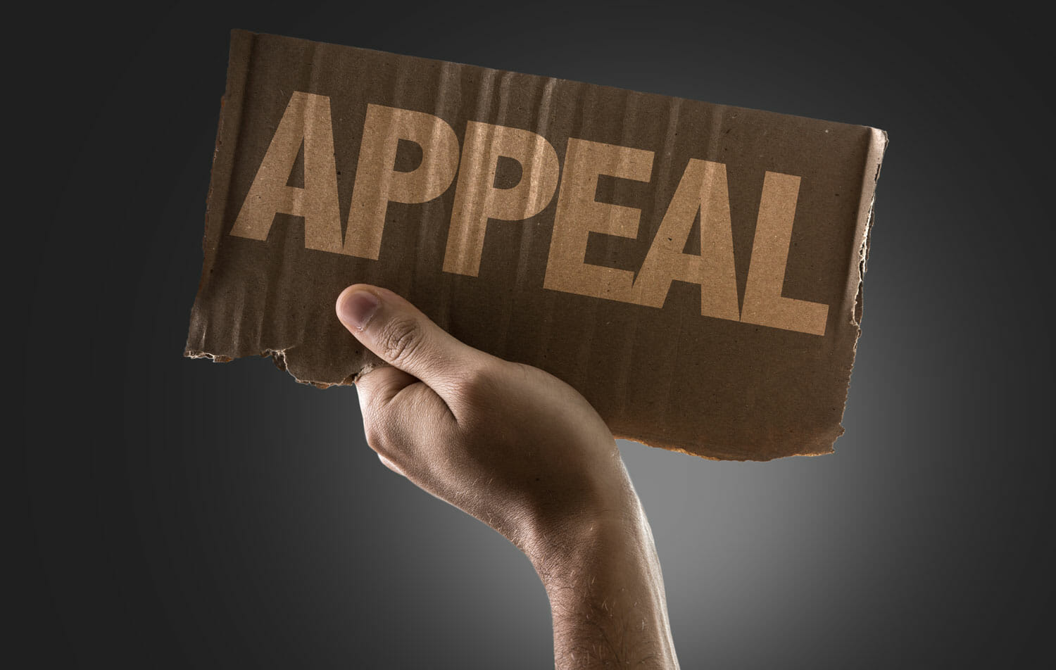 Appeal or Change a Child Support Order