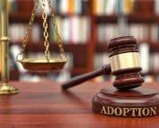 contesting adoption in Virginia